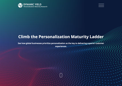 Dynamic Yield Maturity Survey